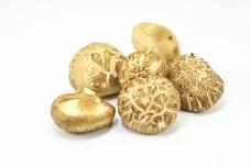 Whole Shiitake mushroom