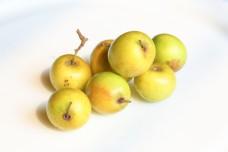 Ziziphus jujube Chinese date Korean date Boroi Fruit  jujube