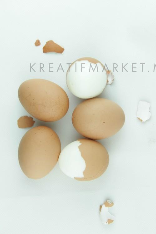 boiled egg on white background