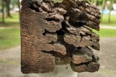 Damage 4x4 wood