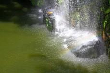 Artificial waterfall in botanic garden