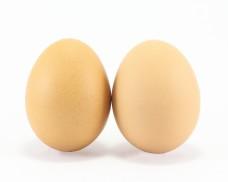TwoFresh Chicken Egg