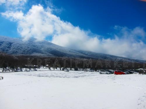 Winter in Jeju Island