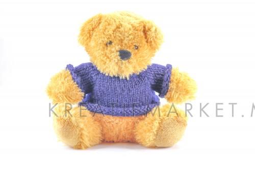 Small stuffed toy teddy bear wearing a blue