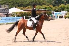 International Horse Show 2014