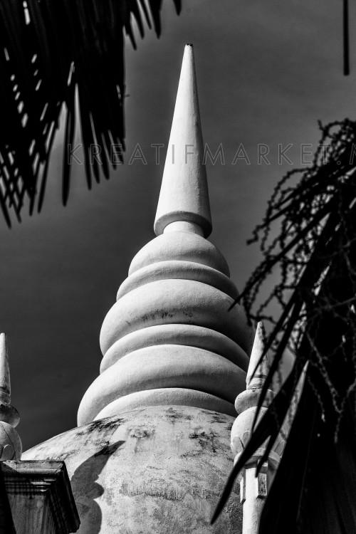 Malaysia Iconic Roof